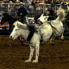 Silver Spurs Rodeo Feb 2013 :