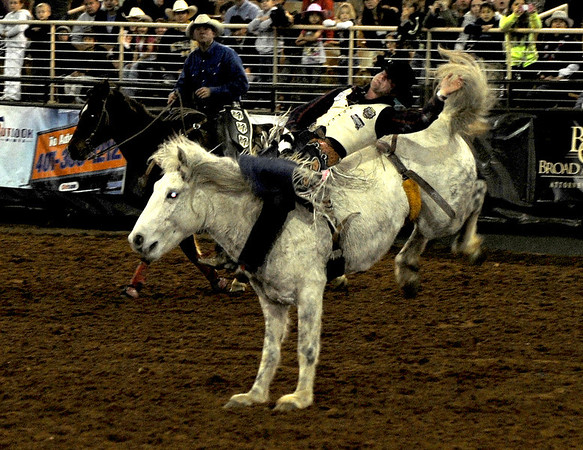 Silver Spurs Rodeo Feb 2013